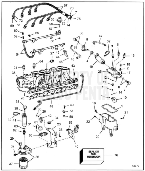 Fuel System & Lower Intake Manifold
